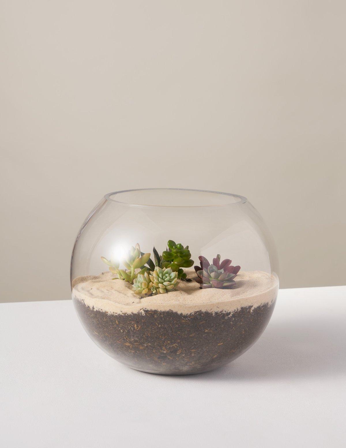 gallery_the-sill_succulentterrarium-kit_2_V2_1200x.progressive.jpg